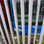 Alistair Liddle's photo